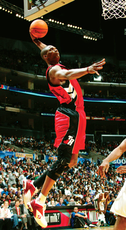 Chris Bosh Raptors Basketball Star