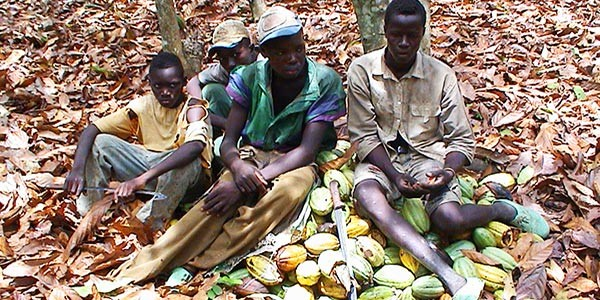 Chocolate Child Slavery