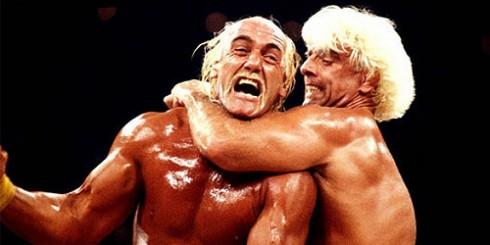 Wrestling Hulk Hogan