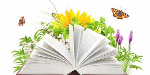 books for spring