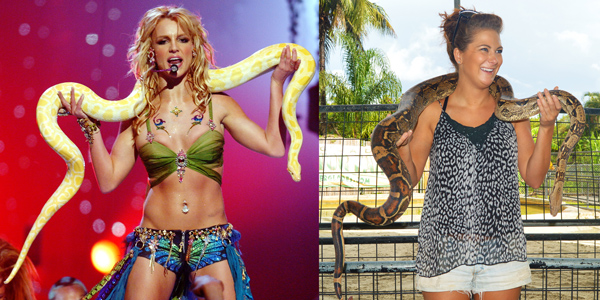 Miranda Furtado vs Britney Spears vs Snake