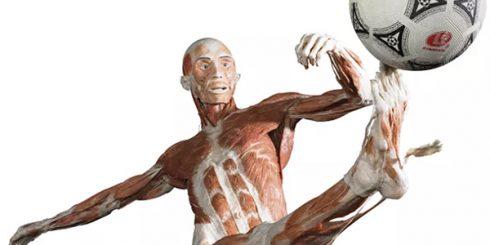 body quiz bodyworks